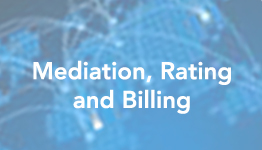 mediation-rating-billing-slide