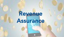revenue-assurance-slide